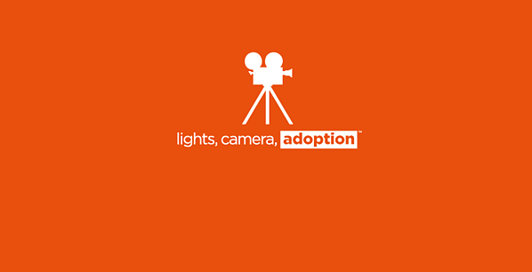 lights.camera.adoption_Slider-01